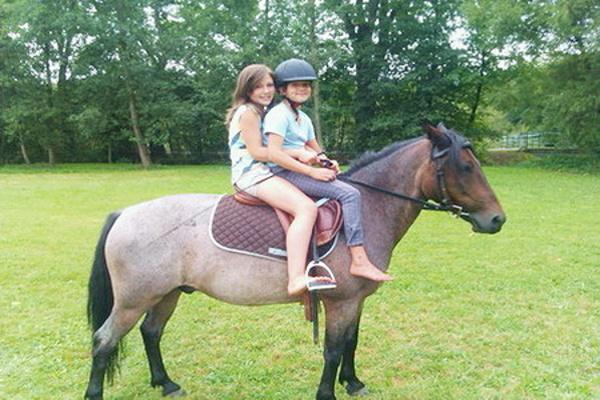 Dovolená v Čechách - dovolená na farmách s koňmi nebo v chatách, chalupách a penzionech, kde jsou koně v sousedství