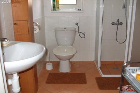 Ubytování Lipno - Chata na Lipně - koupelna