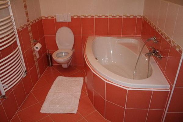 Ubytování Lipno - Domy na Lipně - koupelna